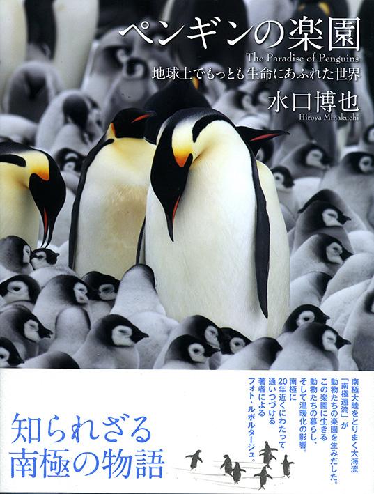 ペンギンの楽園_s