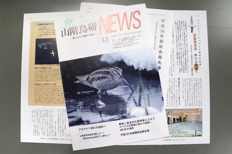 山階鳥研NEWS 2019年3月号
